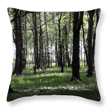 Throw Pillow featuring the photograph Tree In The Woods by Michelle Audas