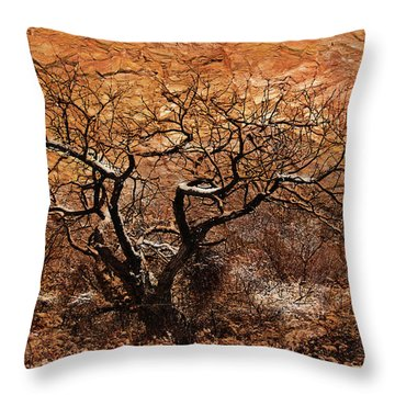 Throw Pillow featuring the photograph Tree In Winter by Barbara Manis