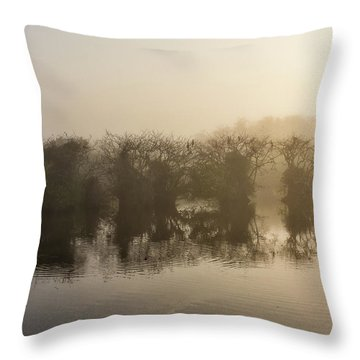 Throw Pillow featuring the photograph Tree Islands by Louise Lindsay