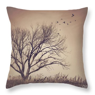 Throw Pillow featuring the photograph Tree by Juli Scalzi