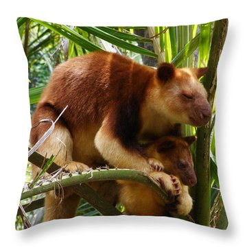 Tree Kangaroo 1 Throw Pillow