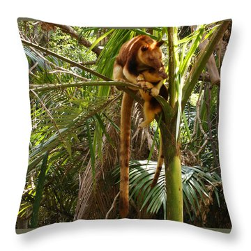 Tree Kangaroo 2 Throw Pillow