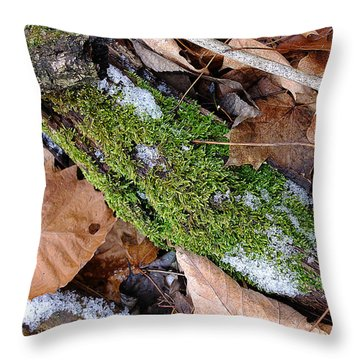 Throw Pillow featuring the photograph Tree Lichen by Scott Kingery