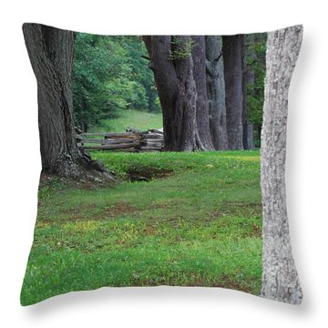 Tree Line Throw Pillow by Eric Liller