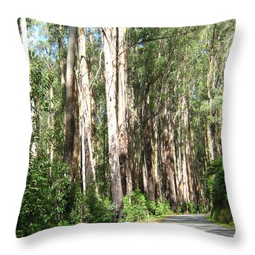 Tree Lined Mountain Road Throw Pillow