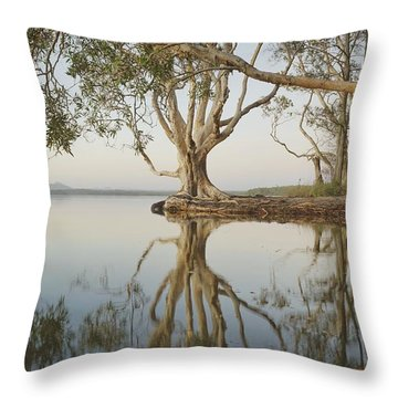 Throw Pillow featuring the photograph Tree Love Down By The Lake by Keiran Lusk