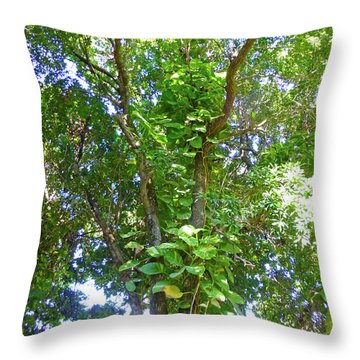 Throw Pillow featuring the photograph Tree M1 by Francesca Mackenney