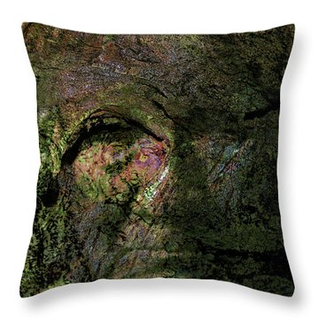 Throw Pillow featuring the photograph Tree Memories # 18 by Ed Hall