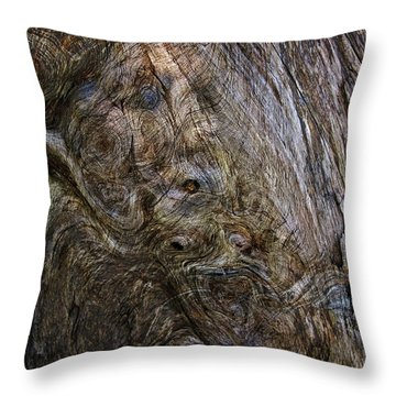 Throw Pillow featuring the photograph Tree Memories # 19 by Ed Hall