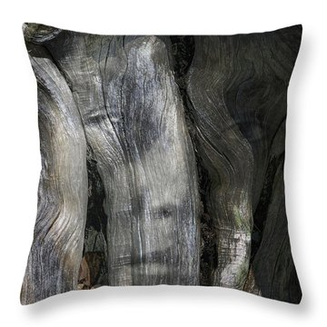 Throw Pillow featuring the photograph Tree Memories # 20 by Ed Hall