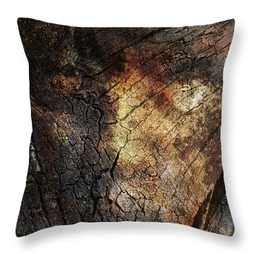 Throw Pillow featuring the photograph Tree Memories # 21 by Ed Hall