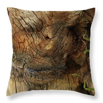 Throw Pillow featuring the photograph Tree Memories # 22 by Ed Hall