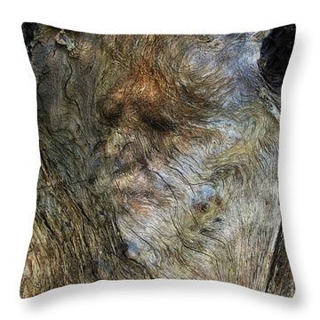 Throw Pillow featuring the photograph Tree Memories # 25 by Ed Hall