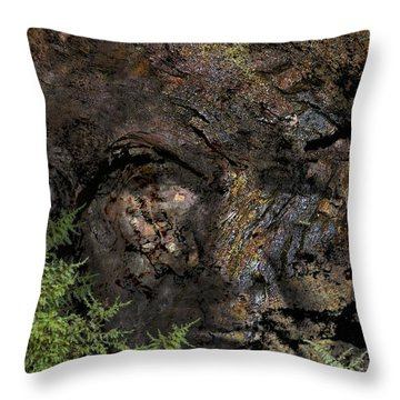 Throw Pillow featuring the photograph Tree Memories # 27 by Ed Hall
