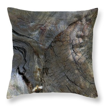 Throw Pillow featuring the photograph Tree Memories # 28 by Ed Hall