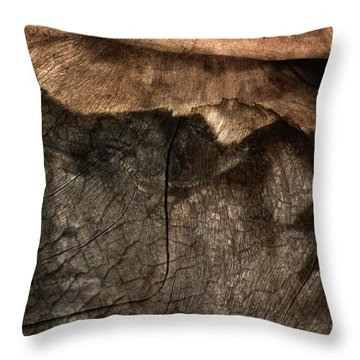 Throw Pillow featuring the photograph Tree Memories # 29 by Ed Hall