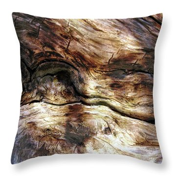 Throw Pillow featuring the photograph Tree Memories # 30 by Ed Hall