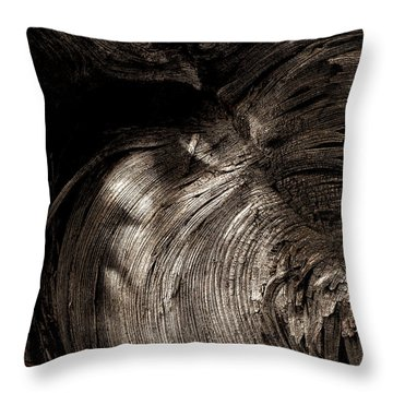 Throw Pillow featuring the photograph Tree Memories # 31 by Ed Hall