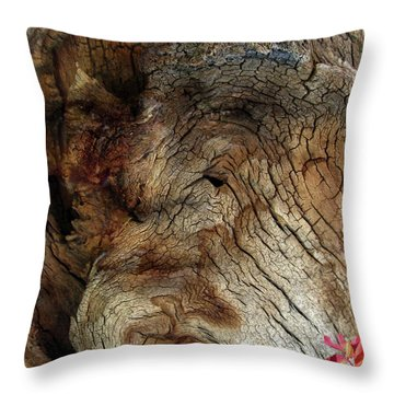 Throw Pillow featuring the photograph Tree Memories # 34 by Ed Hall