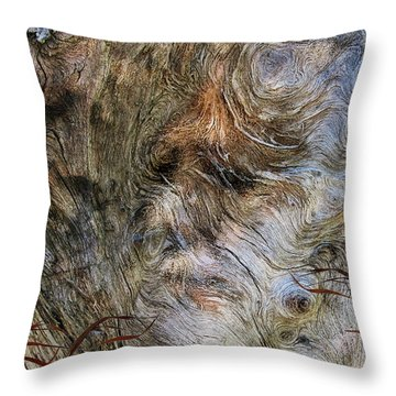 Throw Pillow featuring the photograph Tree Memories # 35 by Ed Hall