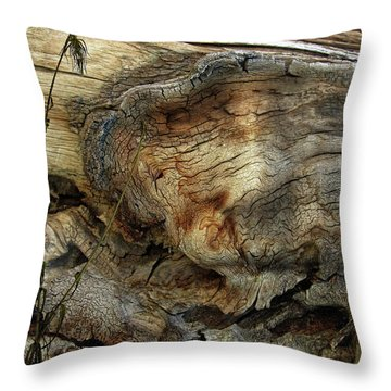 Throw Pillow featuring the photograph Tree Memories # 36 by Ed Hall