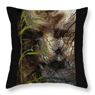 Throw Pillow featuring the photograph Tree Memories # 37 by Ed Hall