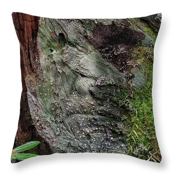 Throw Pillow featuring the photograph Tree Memories # 38 by Ed Hall