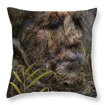 Throw Pillow featuring the photograph Tree Memories # 39 by Ed Hall
