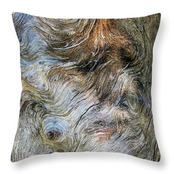 Throw Pillow featuring the photograph Tree Memories # 40 by Ed Hall