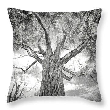 Tree Monster Bw Ap Throw Pillow
