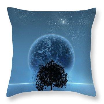 Digital Illustration Throw Pillows