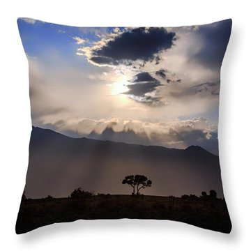 Throw Pillow featuring the photograph Tree Of Light by Cat Connor