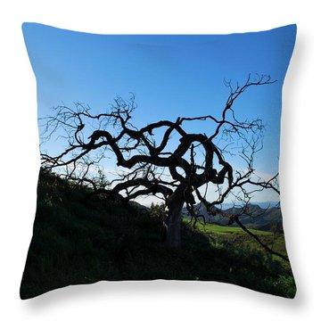 Throw Pillow featuring the photograph Tree Of Light - Landscape by Matt Harang