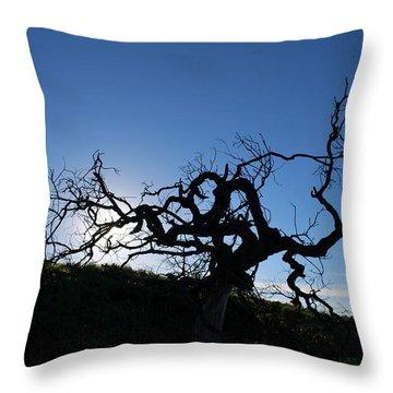 Throw Pillow featuring the photograph Tree Of Light Silhouette Hillside by Matt Harang