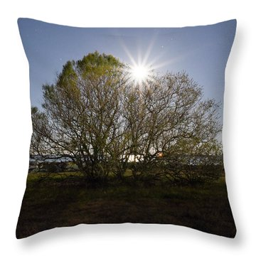 Tree Of The Night Throw Pillow