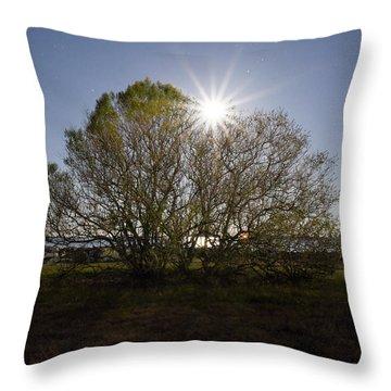 Tree Of The Night Throw Pillow