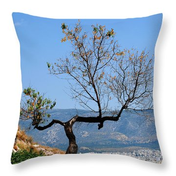 Tree On Acropolis Hill Throw Pillow