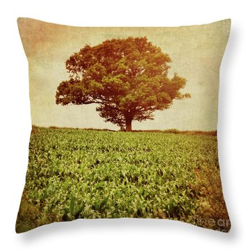 Throw Pillow featuring the photograph Tree On Edge Of Field by Lyn Randle