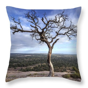 Tree On Enchanted Rock - Square Throw Pillow
