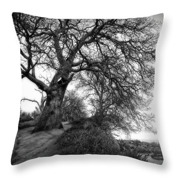 Tree On Ridge - Black And White Throw Pillow
