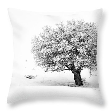 Tree On Snowy Slope Throw Pillow