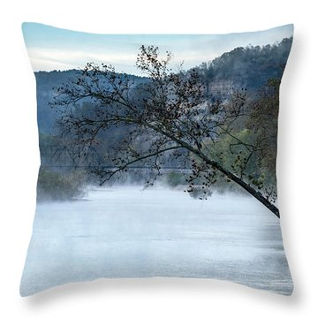 Tree Over Gasconade River Throw Pillow by Jae Mishra
