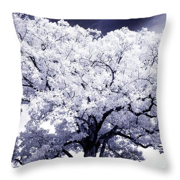Throw Pillow featuring the photograph Tree by Paul W Faust - Impressions of Light
