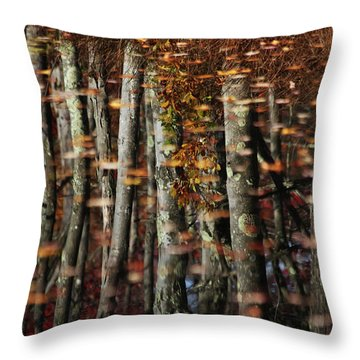 Tree  Reflect Throw Pillow by Karol Livote