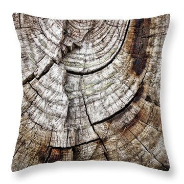 Tree Rings - Photography Throw Pillow by Ann Powell