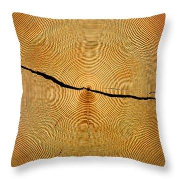 Tree Rings Throw Pillow