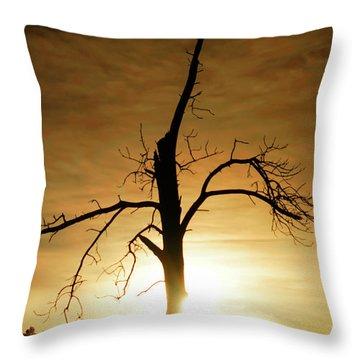 Tree Silhouette At Sundown Throw Pillow