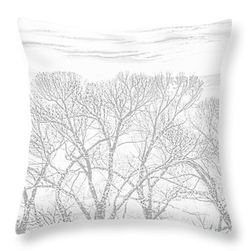 Throw Pillow featuring the photograph Tree Silhouette Gray by Jennie Marie Schell