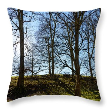 Tree Silhouettes Throw Pillow