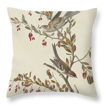 Tree Sparrow Throw Pillow by Rob Dreyer